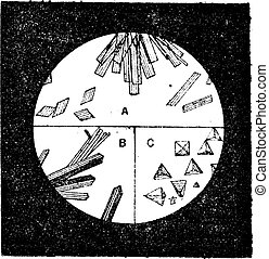 Fig. 3. A. Crystals of hemoglobin in the blood of man. B....
