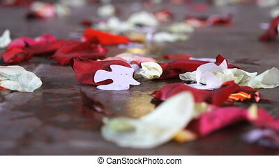 scattered rose petals on the stone