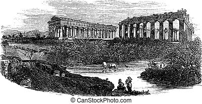 The ruins of temples at Paestum in Campania Italy vintage...