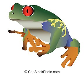 Red eyed colorful frog isolated against a white background