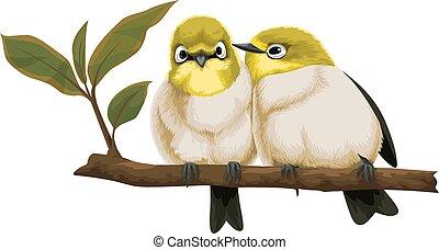 Vector of lovebirds on branch. - Vector illustration of...