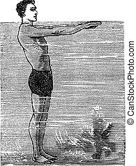 Breaststroke, Second Position, vintage engraved illustration