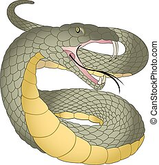 Snake, illustration - Snake, Green and Yellow, Fangs, Forked...