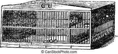 The compartment of cage vintage engraving