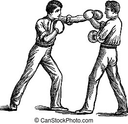Two Boxers boxing vintage engraving - Two Boxers, boxing,...