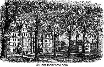 Harvard University, Cambridge, Massachussets vintage...