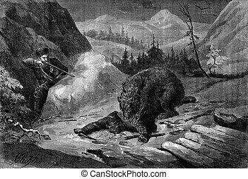 Death of Bear. His comrade visa animal to default shoulder,...