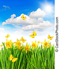 Daffodils easter flowers green grass. Spring landscape