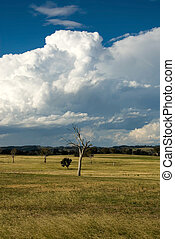 An Approaching Storm - Storm clouds gather over farmland in...