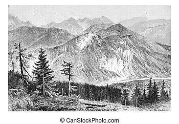 Bialki Valley in Tatra, Poland, vintage engraving - Bialki...
