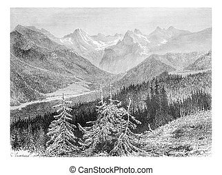 View of the Trzy Korony Massif and the Valley of the White...