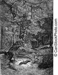 Creek, Divonne, vintage engraving - Creek, Divonne, vintage...