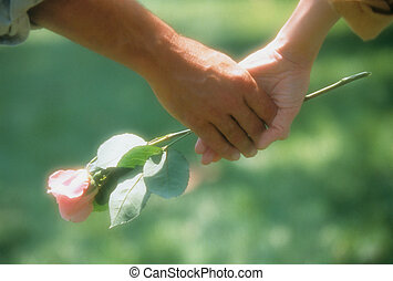 Couple Holding Hands and a Rose - Close-up of a romantic...