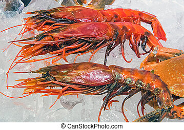 King prawns for sale at a market