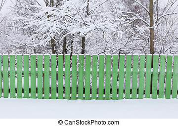 wooden fence enclosing a green garden