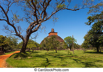 View of the Jetavan the oldest Dagoba in Anuradhapura,...