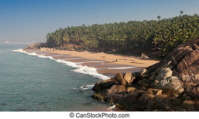 The seashore with palm trees India Kerala - The seashore...