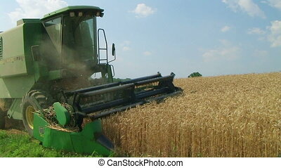Combine Harvesting Wheat 05 - Combine harvesting wheat crop.
