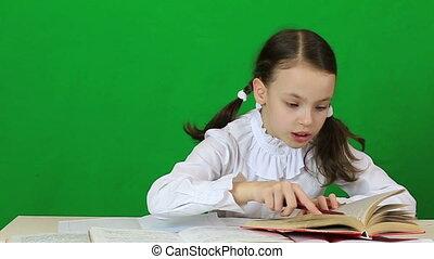 Little girl diligently doing their homework.