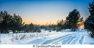 Beautiful winter forest with snow-covered road - Sunset in...