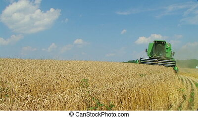 Combine Harvesting Wheat 03 - Combine harvesting wheat crop.