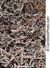 Brown dried stacked firewood pattern background