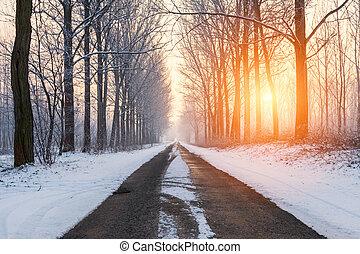 Winter rural road morning