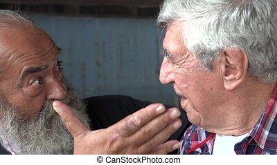 Elderly Male Friends Talking