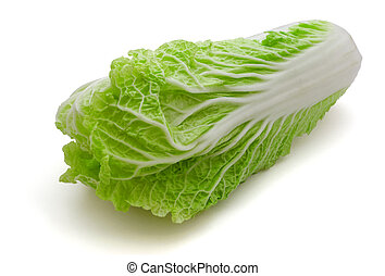 Napa cabbage - Fresh napa (chinese) cabbage isolated on...