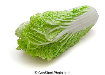 Napa cabbage - Fresh napa (chinese) cabbage isolated on...