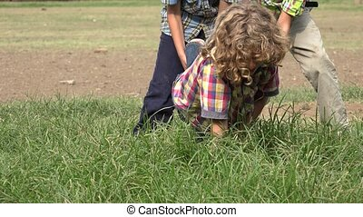 Brothers Playing in Grassy Area
