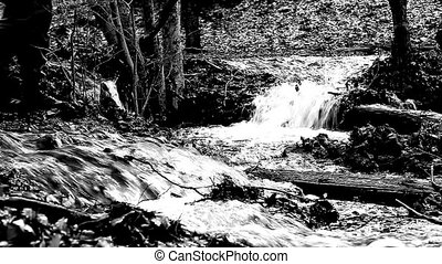 river black and white - Medium shot of water river black and...