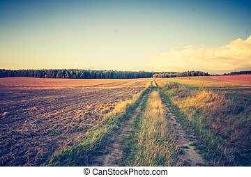 Vintage photo of rural raod - Countryside landscape with...