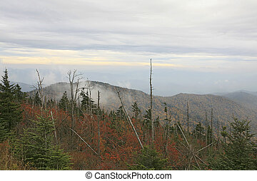 cloudly Clingman\'s - Clingman\'s Dome in Great Smoky...
