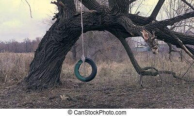 Swing on tree of the tire chamber reeling
