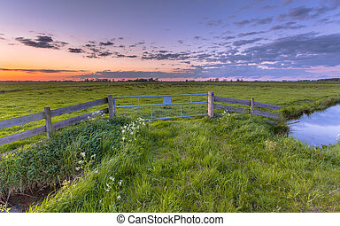 Polder landscape sunset