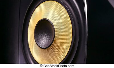 Speaker music professional studio - Speaker music...