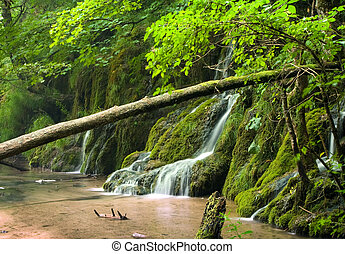 Waterfalls - Beautiful  waterfalls in the forest