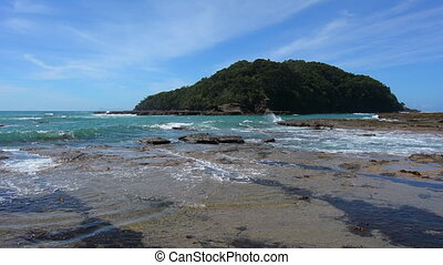 Goat Island Leigh New Zealand - Landscape of Goat Island...