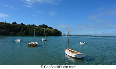 Sail boats mooring New Zealand - Old wooden yachts mooring...