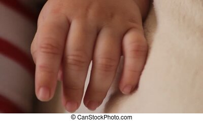 Small Hand Of Infant