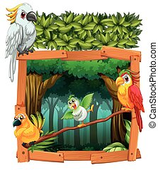 Four birds living in the jungle