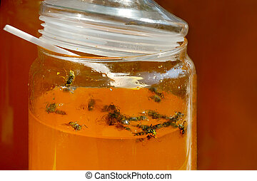 Sweet Trap - Bees trapped in jar with honey