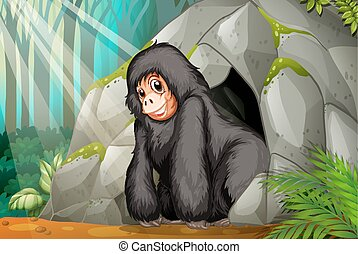 Chimpanzee standing in front of the cave