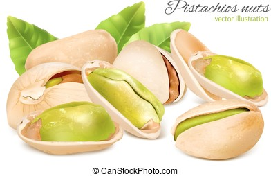 Pistachio nuts with leaves - Vector illustration of...