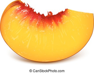 Slice of ripe peach. Fully editable handmade mesh. Vector...