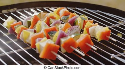 Healthy colorful kebabs with fresh vegetables - Healthy...