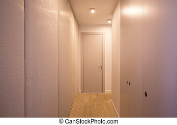Spacious and neat closet in the hallway