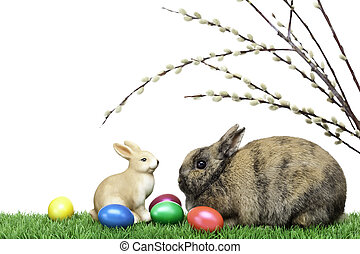 Two Easter bunnies in meadow with Easter eggs and pussy willows