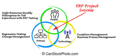 ERP Project Success